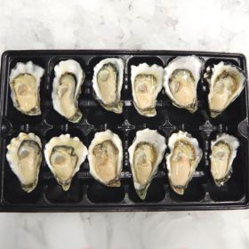Sydney Rock Oysters - A Grade